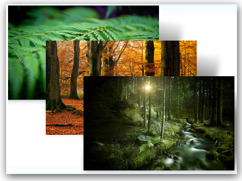 Microsoft's 'Forest' Windows 7 theme